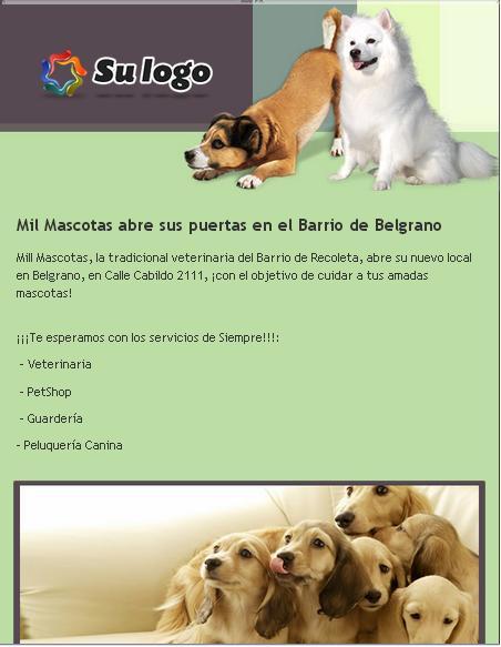 plantilla_de_email_marketing_para_veterinaria_y_mascotas